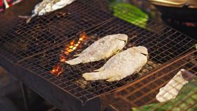 La comida Asia, pescado de la calle cocinó en el fuego asado a la parrilla, platos tradicionales, mariscos para los viajeros y tu almacen de video