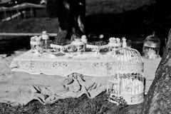 La comida campestre adornó la jaula de pájaros en hierba cerca de la tabla Imagenes de archivo
