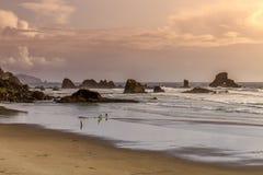 La comida campestre de la puesta del sol en el océano pasa por alto Fotografía de archivo