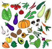 La comida fresca verde de las verduras fijó para la nutrición sana Imagen de archivo libre de regalías