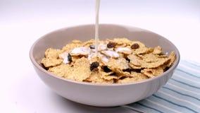 La comida sana seca del cereal de desayuno vertió almacen de metraje de vídeo