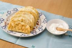 La comida tártara, empanadas frió con el yogur del relleno. Fotografía de archivo libre de regalías