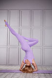 La comodità casuale della bella donna sexy copre per il catalogo atletico co di ballo di forma fisica di esercizio della palestra Fotografia Stock