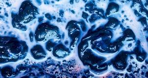La composición abstracta de la estructura hecha del aceite colorido burbujea Imagen de archivo libre de regalías