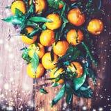 La composición de la Navidad con las mandarinas y la nieve que cae forma escamas C Fotos de archivo