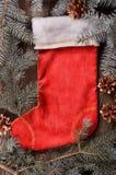 La composición de un calcetín y de un abeto rojos de la Navidad ramifica Imagen de archivo libre de regalías