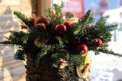 La composición del Año Nuevo del abeto ramifica, los conos, bolas de la Navidad, el Dr. Imágenes de archivo libres de regalías