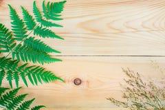 La composición del helecho y un campo de la hierba secada en la tabla de madera con el espacio de la copia Fotos de archivo libres de regalías