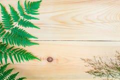 La composición del helecho y un campo de la hierba secada en la tabla de madera con el espacio de la copia Fotografía de archivo libre de regalías