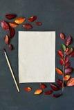 La composición del otoño con el documento, las acuarelas y el cepillo del arte sobre el tablero de tiza, adornó las hojas rojas Fotografía de archivo libre de regalías