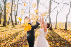 La composición del otoño de los recienes casados felices que lanzan para arriba las hojas amarilleadas en el parque imagen de archivo