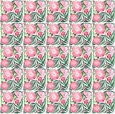 La composition colorée florale de fines herbes tendre lumineuse de l'les pivoines roses avec le vert part sur le modèle blanc de  Image stock