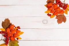 La composition d'automne des lleaves, le physalis, sorbe sur le backgroundFrame en bois blanc fait en automne a séché des feuille photographie stock libre de droits