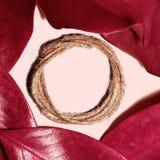 La composition de la magnolia rouge d'automne part sur pâle - backgroun rose photographie stock