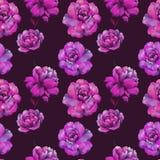 La composition des fleurs de la pivoine Mod?le sans couture d'aquarelle des fleurs Mod?le botanique Pivoines d'aquarelle illustration de vecteur