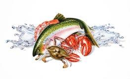 La composition des fruits de mer et des poissons différents, avec de l'eau éclabousse. illustration de vecteur