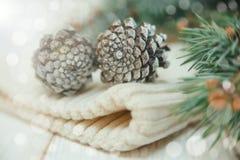 La composition en hiver avec des branches et des cônes de sapin sur le blanc a tricoté le chapeau Photo stock