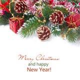 La composition en Noël avec le sapin s'embranche, des cônes de pin rouge Photo stock