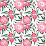La composition florale graphique de belle offre de ressort de l'les pivoines roses avec le vert part du modèle Image stock