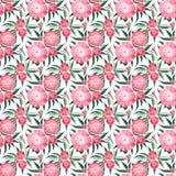 La composition florale graphique de belle offre lumineuse de ressort de l'les pivoines roses avec le vert part du modèle Photos stock