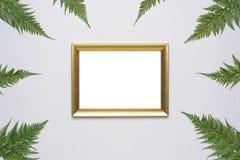 La composition minimale élégante avec le cadre et le vert de photo part sur un fond en bois blanc photographie stock