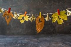 La composizione in autunno con le foglie dorate e la parola CADONO sulla corda immagine stock