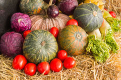 La composizione con la frutta e le verdure si chiude su Fotografie Stock Libere da Diritti