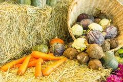 La composizione con la frutta e le verdure si chiude su Fotografia Stock