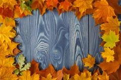 La composizione d'annata con la frutta di autunno ha sistemato in un cerchio su Th Fotografia Stock