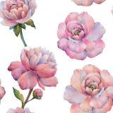 La composizione dei fiori della peonia Modello senza cuciture dell'acquerello dei fiori Modello botanico Peonie dell'acquerello royalty illustrazione gratis