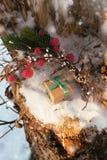 La composizione in Natale con il contenitore di regalo ha decorato il nastro verde Immagini Stock