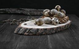 La composizione in Pasqua con le uova di quaglia ed i ramoscelli del salice sbocciano fotografie stock libere da diritti