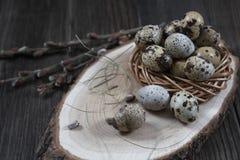 La composizione in Pasqua con le uova di quaglia ed i ramoscelli del salice sbocciano fotografia stock