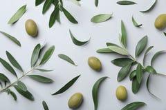 La composizione piana in disposizione con oliva verde fresca va fotografie stock