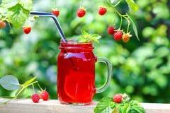 La compote de boisson des myrtilles rouges de cerises de cassis de baies en cocktail cogne avec des pailles buvant le broc et les photographie stock