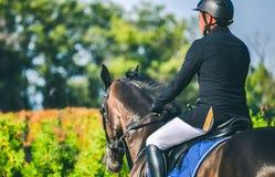 La concurrence de Showjumping, le cheval de baie et le cavalier dans l'exécution uniforme noire sautent par-dessus le frein Photos stock