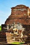 La condizione del Buddha Immagine Stock Libera da Diritti