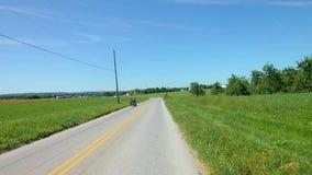 La conducción a lo largo del campo de Amish pareció a los niños de Amish en Pony Pulled Wagon almacen de video