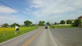 La conducción a lo largo del campo de Amish pareció un caballo y un cochecillo almacen de video