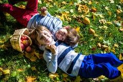 La configuration de fille et de deux garçons sur l'herbe et mangent des pommes Photographie stock libre de droits