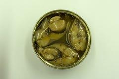 La conserve de thon d'isolement sur le blanc a mis en boîte le thon gratuit de viande blanche d'albacore de soja emballé en étain Photographie stock