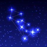 La constelación del lobo en el cielo estrellado de la noche Ejemplo del vector del concepto de astronomía Fotos de archivo libres de regalías