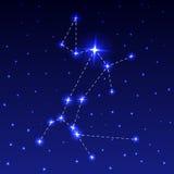La constelación del perro grande Foto de archivo libre de regalías