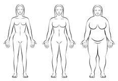 La constitución del cuerpo femenino mecanografía el peso normal gordo fino stock de ilustración