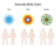 La constitución del cuerpo mecanografía los símbolos Vata Pitta Kapha de Ayurveda de los pares stock de ilustración