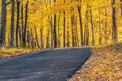 La contea di Brown Autumn Road fotografia stock