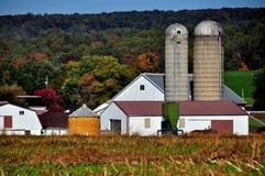 La contea di Lancaster, PA: Azienda agricola di Amish con il silos Immagini Stock
