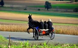 La contea di Lancaster, PA: Guida della famiglia di Amish in carrozzino Fotografia Stock Libera da Diritti