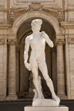 La copia di una statua del David di Michelangelo nel Capitoline Fotografia Stock Libera da Diritti