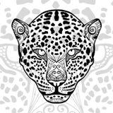 La copie noire et blanche de léopard avec les modèles ethniques de zentangle Photographie stock